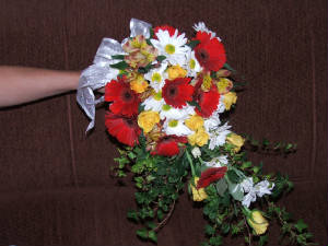 weddings/gerberas.jpg